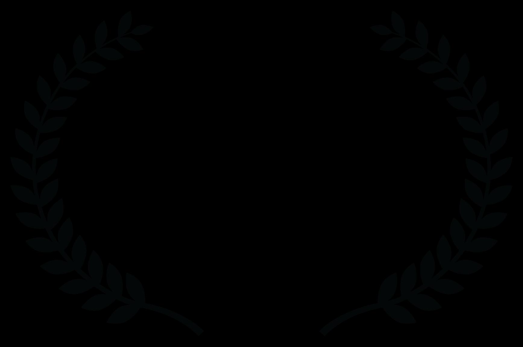 Finalist - FROSTBITE International Indie Fest - 2017